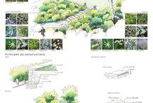 Landscape inspiration