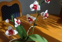 HORGOLT orhidea