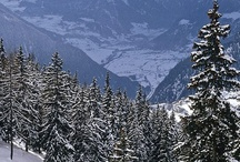 White Mountains / Great for a day trip or a weekend getaway!