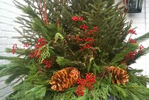 Christmas / by Nancy Savage