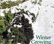 Growing through Winter. / Preparing your garden for winter and growing frost tolerant varieties .