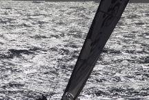 sailing fotos