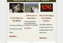 Freedom Reins LLC Newsletters / A taste of what you receive monthly when you sign up for my newsletter at freedomreinsllc.com