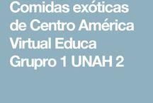 COMIDAS EXOTICAS DE CENTRO AMERICA