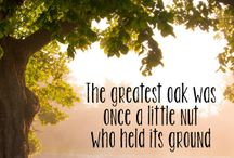 {Nature Quotes} / We love nature and wildlife quotes! Here are some of our favourites.