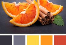Color schemes in the home