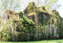 Nature take-over / Door de mens gemaakte bouwsels, verlaten en heroverd door de natuur.