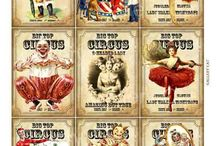 Circus / colour and fun