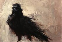 kråke