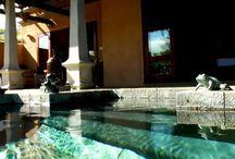 Dubai and Mauritius / April 2014 / by Angela Elizabeth Metri