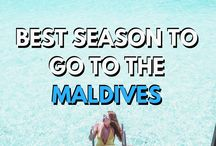 MALDIVES / Sharing useful tips, inspiration and advice from all over the MALDIVES. From travel tips to where the best spots, hotels to stay, don't miss anything!   Maldives / Resorts / Honeymoon