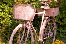 Decorative Bikes / Dekorativní kola