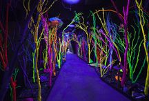 Glowing installations