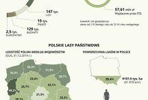 Myślistwo w Polsce