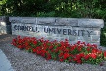 Cornell University / Marshall Alston attended Cornell University and graduated in 2015 with his masters degree in business administration.