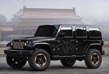 Wild Ride / Automobiles