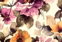 Floral Inspiration / Shop Fabulous at Cavendish Square and online http://www.fabulousflowers.co.za