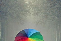 Rainbows - Life is Colour! / by Kunle T Campbell