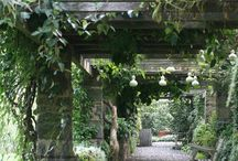 Gardens and Flowers / gardens, floral arrangements and garden rooms