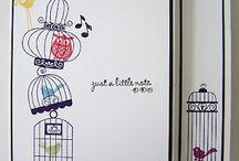 Builder bird cage