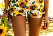 It's a Sunflower
