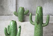 For the love of Cacti