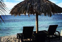 Sweet Jamaica- Montego Bay