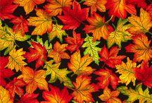 Осенние принты