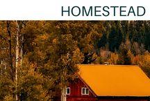 Homestead & sustainable living