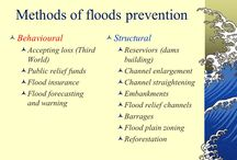 Flood Control / Floods prevention, Trees for flood control, Floods, Forest prevent floods
