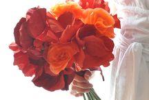Sisters wedding / by Malorie Wiers