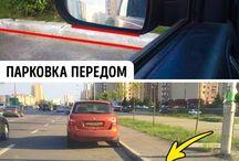 жолоодлого