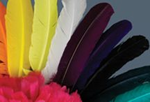 TURKEY FEATHERS / Several styles and varieties of natural and dyed turkey quills, pointers, flats, tails and plumage available at www.featherplace.com