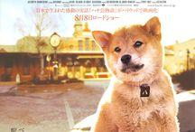 Movies I love / by Melinda Courteney