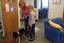 Dogsbody visits Little Bridge House / Dogsbody came along to visit the children at Little Bridge House in July. #doggietrek
