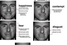 Facial microexpressions & body language