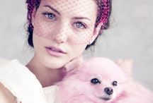 Pets / by Suzanne