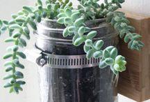> Minute Responsable < / DIY autour du recyclage - comment donner une seconde vie à nos objets du quotidien DIY malin - détournements d'objets de la maison