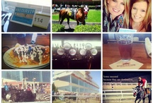 2013 Instagram Photo of the Season Entries! / Thanks to all of our fans for all their great entries for our Quarter Horse Photo of the Season contest on Instagram!