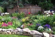 Gardening/Outdoor spaces / by Holly Welker
