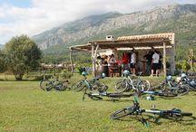News at Kameni Dvori / Updates & News from Kameni Dvori - Holiday Village Konavel, Croatia.
