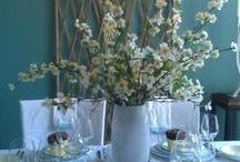 Table Scapes/What's for dinner? / by Kathi Peters