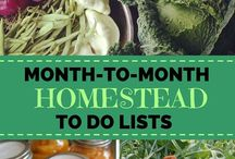 Homestead Life / Homesteading: Ideas & inspiration for a natural farm lifestyle in Greece and ZA. Living close to the land; creatively, ecologically, and harmoniously.