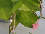 Crochet - Butterflies & Bows