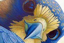 Bird Art / by Judy Morehouse