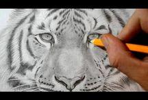 Kresba - videa