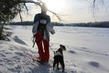 Snowshoeing! / by Lisa Roy