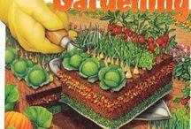 outdoor and gardening