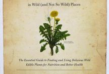 **Medicinal herbs & plants... / by KD Bennet