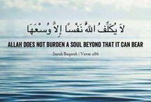 verses and Quran